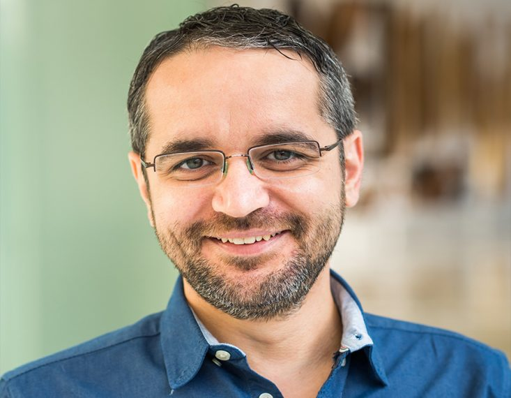 Photo of Professor Mircea Dinca